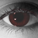Gothika Blood Red