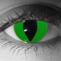 Gothika Green Cat