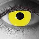 Gothika Zombie Yellow